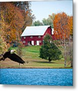 Big Red Barn Eagle Rocky Fork  Metal Print