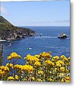 Big Sur Loves Yellow By Diana Sainz Metal Print
