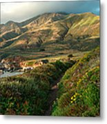 Big Sur Trail At Soberanes Point Metal Print
