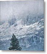 Big Tree At The Mountains Metal Print