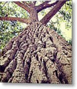 Big Tree Bark Metal Print