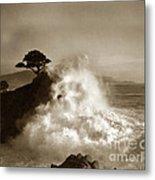 Big Wave Hitting The Lone Cypress Tree Pebble Beach California 1916 Metal Print