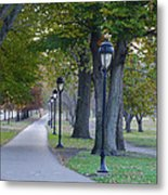 Bike Path Along Kelly Drive Metal Print