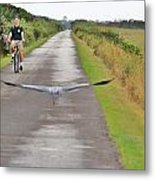 Biker And The Bird Metal Print