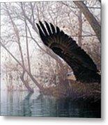 Bilbow's Eagle Metal Print