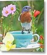 Billy Bluebird Having Tea Metal Print
