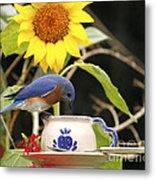 Bluebird And Tea Cup Metal Print