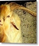 Billy Goat Gruff Metal Print