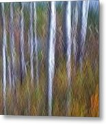 Birch Fall Abstract Metal Print