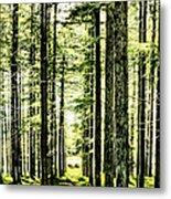 Birch Forest Fractal Metal Print