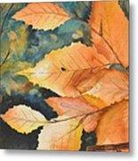 Birch Leaves Metal Print