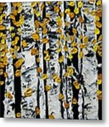 Birch Study Fall Metal Print