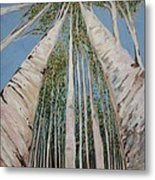 Birch Tree 2 Metal Print