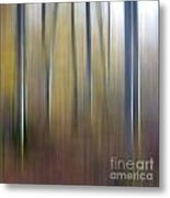 Birch Trees. Abstract. Blurred Metal Print