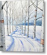 Birch Trees Along The Curvy Road Metal Print