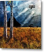 Birch Trees And Biplanes  Metal Print by Bob Orsillo