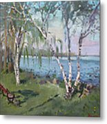 Birch Trees By The River Metal Print