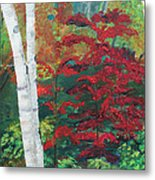 Birch Trees In Red Metal Print