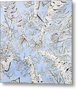 Birch Trees Metal Print by Leo Gehrtz