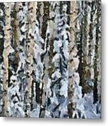 Birches In The Winter Metal Print