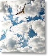 Bird And The Clouds Metal Print