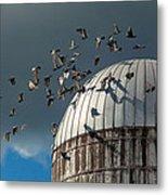 Bird - Birds Metal Print by Mike Savad