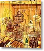 Bird Cages Metal Print