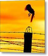 Bird Flying Off From Prison Fence Metal Print