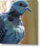 Bird In Blue Dress Metal Print