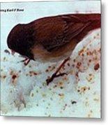 Bird In Snow 2 Metal Print