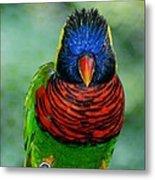Bird In Your Face  Metal Print