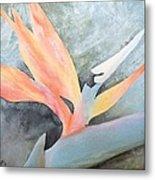 Bird Of Paradise 2 Metal Print