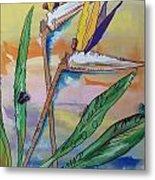 Bird Of Paradise Metal Print by Karen Carnow