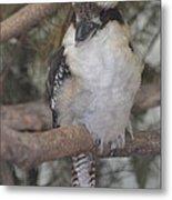 Bird On Branch II Metal Print