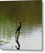Bird On The Lake Metal Print