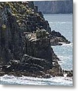 Bird Paradise On Cook Strait Metal Print
