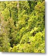 Bird View Of Lush Green Sub-tropical Nz Rainforest Metal Print