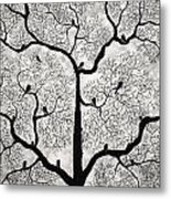 Birds And Trees Metal Print