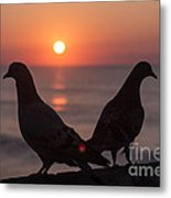 Birds At Sunrise Metal Print by Nelson Watkins
