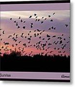 Birds At Sunrise Poster Metal Print