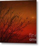 Birds At Sunset Metal Print