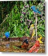 Birds Bathing Metal Print