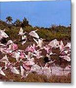 Birds Call To Flight Metal Print