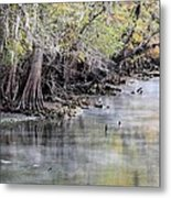 Birds Cold Morning Fishing Metal Print