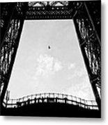Birds-eye View Metal Print by Dave Bowman