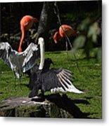 Birds Gather Metal Print