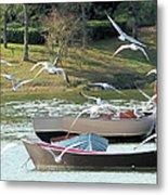 Birds In Flight At The Lake Metal Print