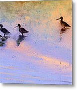 Birds In The Camargue Metal Print