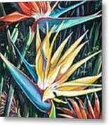Birds Of Paradise  2   Sold Metal Print