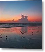 Birds On Beach Metal Print